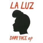 Damp Face - EP