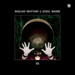 Bacao Rhythm & Steel Band - Jungle Fever