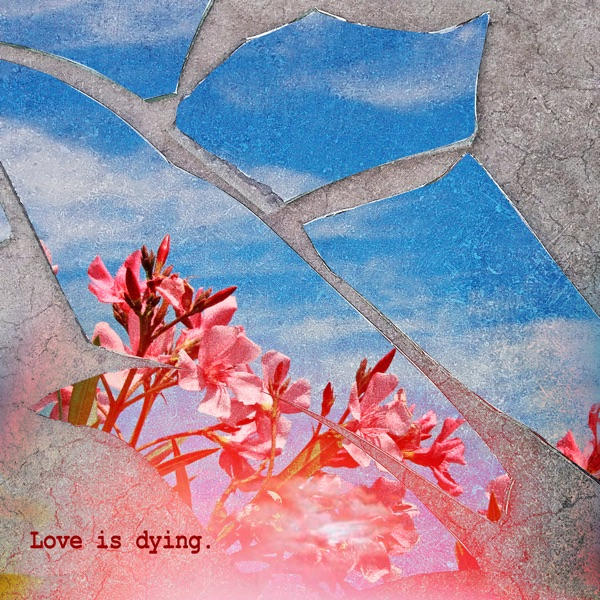 Love Is Dying. (feat. Powfu) - Single