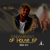 Mzala Wa Afrika - Fundamentals of House
