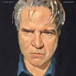 Lloyd Cole - When I Came Down from the Mountain