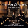 Home for Christmas, The Concert