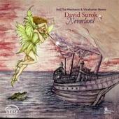 David Surok - Neverland (The Mechanic & Vindicator Remix)