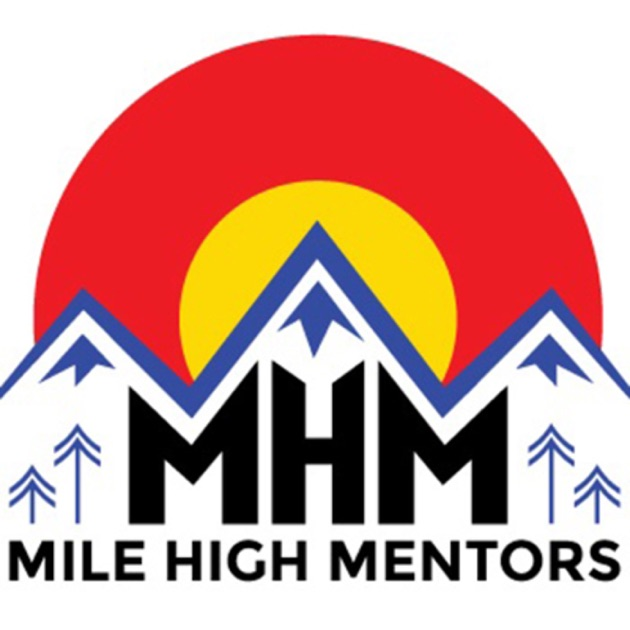 mentorship in healthcare 2 ed