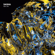 La Cuarta Galaxia / The Echo Forgets (feat. Tiefschwarz & Sasha) [Tiefschwarz Remix / Sasha's Moog-apella] - Javier Logares & Kaarel / George Fitzgerald