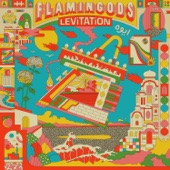 Flamingods - Club Coco