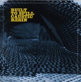 Built To Spill / Caustic Resin - When Not Being Stupid Is Not Enough