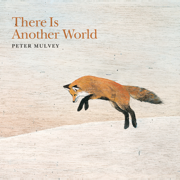 There Is Another World - Peter Mulvey - Peter Mulvey