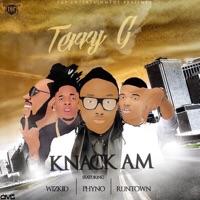 Terry G - Knack Am (feat. Wizkid, Runtown & Phyno) - Single