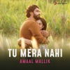 Tu Mera Nahi - Single