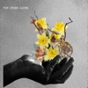 The Other Lover - Single