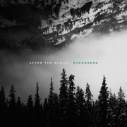 Evergreen - After the Burial - After the Burial