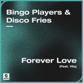 Forever Love (feat. Viiq) [Extended Mix] artwork