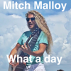 Mitch Malloy - What a Day bild