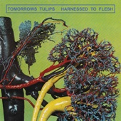 Tomorrows Tulips - Certain Frantic Quality