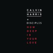How Deep Is Your Love - Calvin Harris & Disciples