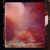 Polaroid (feat. Jimmybrown) - Wildberry