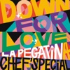Down For Love by La Pegatina, Chef'Special iTunes Track 1
