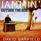 David Garfield - Rock Steady