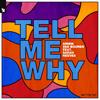 Armin van Buuren - Tell Me Why (feat. Sarah Reeves) artwork