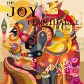 The Joy Formidable - The Wrong Side