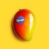 King - Mango ilustración