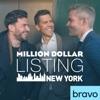 Million Dollar Listing: New York, Season 7 - Synopsis and Reviews