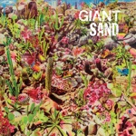 Giant Sand - Valley of Rain