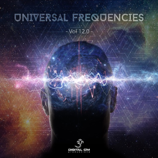 Universal Frequencies, Vol. 12 by Various Artists