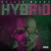 Collie Buddz - Love & Reggae