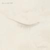 Neil & Liam Finn - Lightsleeper  artwork