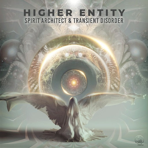 Higher Entity - Single by Spirit Architect & Transient Disorder