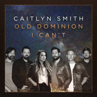 I Can't (feat. Old Dominion) (Acoustic) - Single