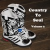 Country To Soul (Volume 2) artwork
