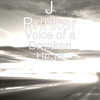 Voice of a Drunken Heart - J Brinker