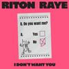 Riton & RAYE - I Don't Want You artwork