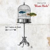 MTV Unplugged: Música de Fondo - Zoé Cover Art
