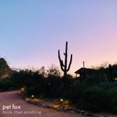 Pet Fox - Imagine Why
