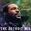 What s Going On The Detroit Mix