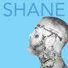 Madchild - Shane  artwork