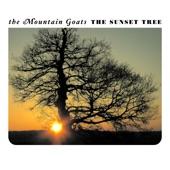 The Mountain Goats - Dance Music