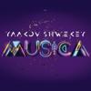 Aish - Yaakov Shwekey