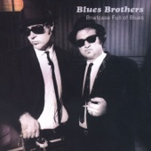 The Blues Brothers - Flip, Flop & Fly (Live)