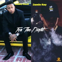 For the Night (feat. Jamie Ray) - Single Mp3 Download