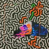 Animal Collective - Hip Sponge