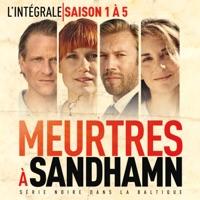 Télécharger Meurtres à Sandhamn, Saisons 1 à 5 (VOST) Episode 13