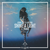 Shine a Light (feat. Andros)