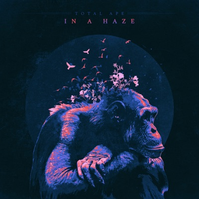 In a Haze - Single MP3 Download