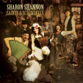 Saints and Angels (feat. The Waterboys)