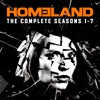 Homeland, Seasons 1-7 - Synopsis and Reviews